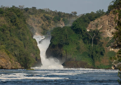 Murchison Fall National Park, Uganda, Foto-Nr. 312