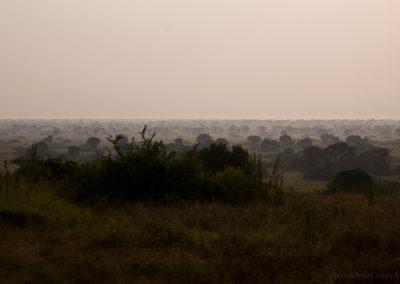 Queen Elisabeth Park, Uganda, Foto-Nr. 419