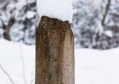 Schneehut, Foto-Nr. 212