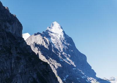 Eiger, Foto-Nr. 106