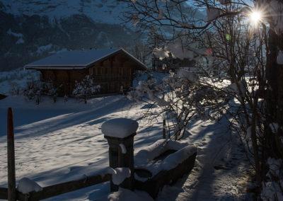 Grindelwald, Foto-Nr. 530