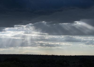 Gewitterstimmung über der Serengeti