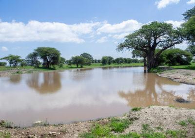 Tarangire-Fluss