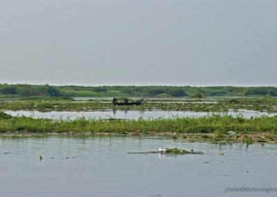 Kazingakanal, Murchison Fall National Park, Uganda, Foto-Nr. 401