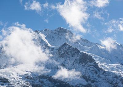 Jungfrau, Foto-Nr. 329