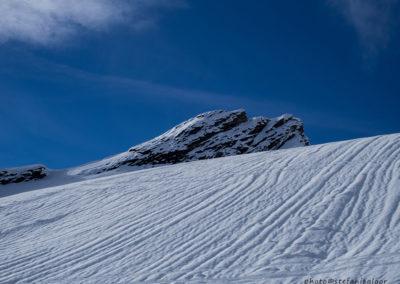 Schilt, Grindelwald, Foto-Nr. 451