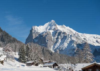 Wetterhorn, Grindelwald (CH), Foto-Nr. 104