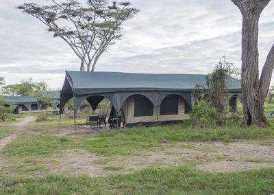 Kirurumucamp, Ngorongoro-Schutzgebiet